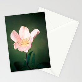 October flower Stationery Cards