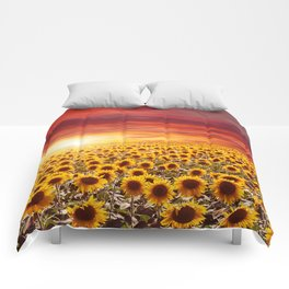 Field of blooming sunflowers on a background sunset Comforters
