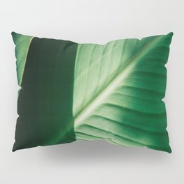 Close Up Of Green Tropical Textured Leaf Pillow Sham