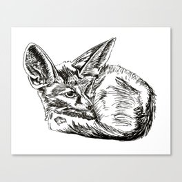 Little Fennec Fox Canvas Print