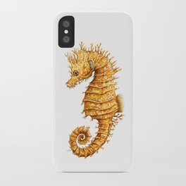 Horse of the seas, Seahorse beauty iPhone Case