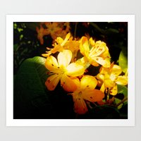 Little drops of floral gold Art Print