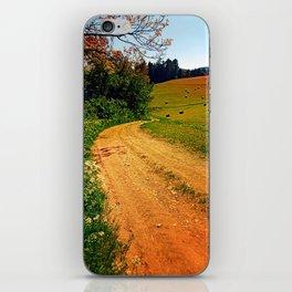 Hiking trail through springtime nature iPhone Skin