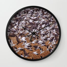 Snow geese in flight Wall Clock