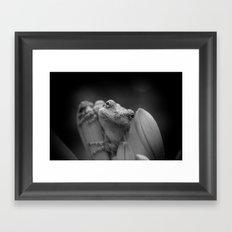 Portrait of a Grey Tree Frog Framed Art Print