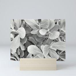 Sea Grapes Mini Art Print