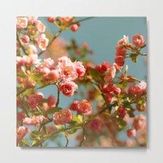 Spring Things Metal Print