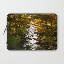 The Salmon's End Laptop Sleeve