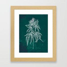 Color Cannabis Illustration Framed Art Print