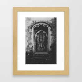 Vintage door Framed Art Print