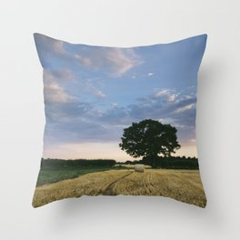 Field of round straw bales at sunset. Norfolk, UK. Throw Pillow