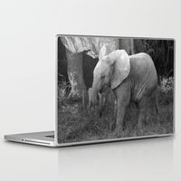 baby elephant Laptop & iPad Skins featuring Baby Elephant by C. Bright