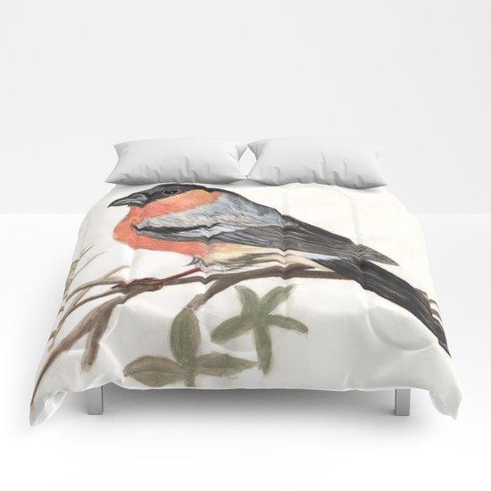 Eurasian bullfinch bird Comforters
