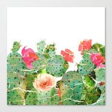 scratched cactus Canvas Print