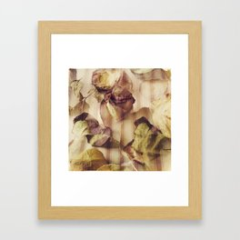 rose petals, french pattern Framed Art Print