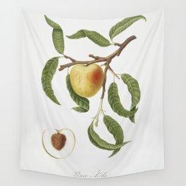 Peach (Persica mali-formis) from Pomona Italiana (1817 - 1839) by Giorgio Gallesio (1772-1839) Wall Tapestry