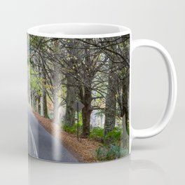 Mount Wilson, Blue Mountains Coffee Mug