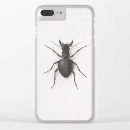 Pierre Joseph Redouté - A Stag Beetle Clear iPhone Case
