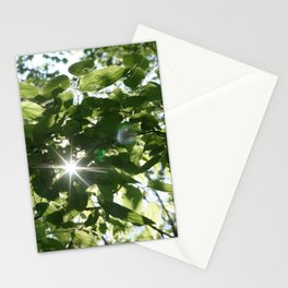 sunflare through the leaves Stationery Cards