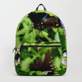 Pipevine Swallowtail Butterfly 2 Backpack