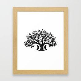 The Zen Tree Framed Art Print