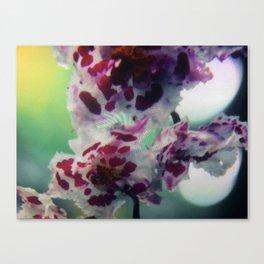 Flowers 1 | Fleurs Canvas Print