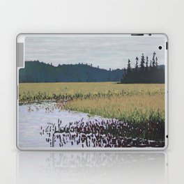 The Grassy Bay, Algonquin Park Laptop & iPad Skin