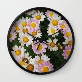 White and pink daisies Wall Clock