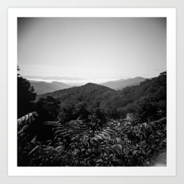 The Great Smoky Mountains in Black and White - Film Photograph Art Print