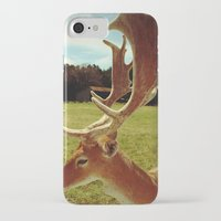 antlers iPhone & iPod Cases featuring Antlers by Anna Dykema Photography