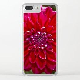 Nature Mandala 3 Clear iPhone Case
