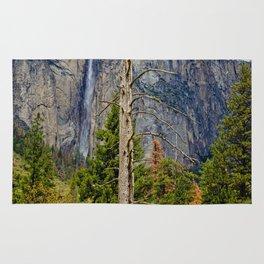 Tree In Yosemite Rug