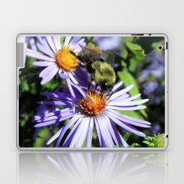 Pollen Dusted Bee on Asters Laptop & iPad Skin