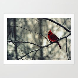 Winter friend 2. Art Print