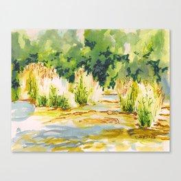Hafren Reeds Canvas Print