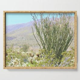 Spring in the Desert with Octotillo by Reay of Light Photography Serving Tray