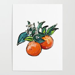 Oranges and Orange Blossom California Citrus Pattern Painting on White Poster