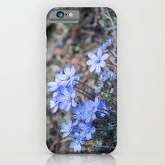 liverleaf iPhone 6s Slim Case