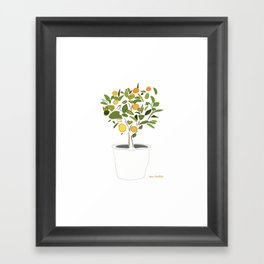 Orange tree in pot Framed Art Print