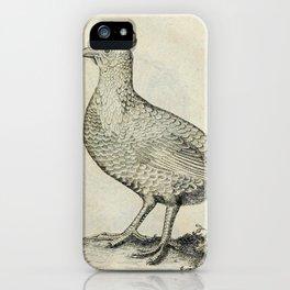 022 persische henne (Ger)2 iPhone Case