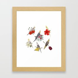 Cockatiels Galore Framed Art Print