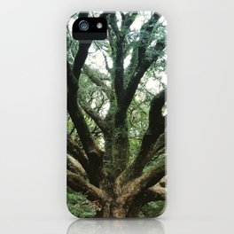 Age and Wisdom iPhone Case