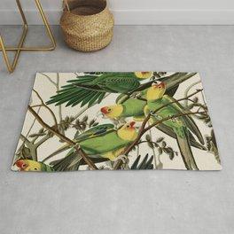 Carolina Parrot - John James Audubon's Birds of America Print Rug