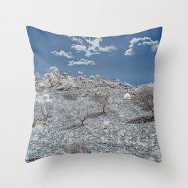 Backwoods Wilderness Throw Pillow
