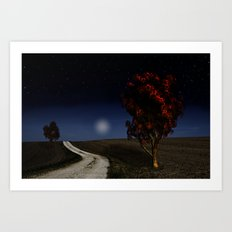 Night Sky in the Midwest  Art Print