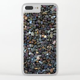Garden Path Clear iPhone Case
