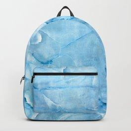 blue ice II Backpack