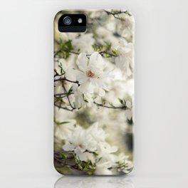 Magnolia Dreams iPhone Case