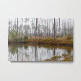 Morning in Okefenokee Swamp with mist and trees reflected in water Metal Print