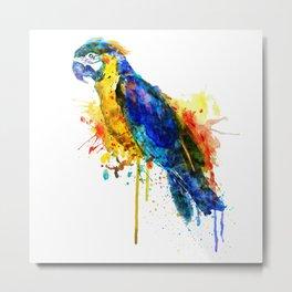 Parrot Watercolor Metal Print